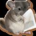 Micro_chinchilla